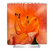 Glowing Orange Shower Curtain