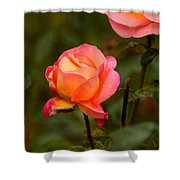 Glowing Pair Shower Curtain
