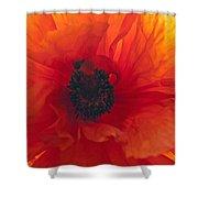 Glowing Poppy Shower Curtain