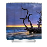 Glowing Sands At Driftwood Beach Shower Curtain by Debra and Dave Vanderlaan