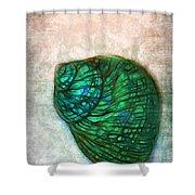 Glowing Seashell Shower Curtain