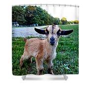 Goatee Shower Curtain