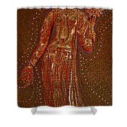 Goddess 1 Shower Curtain