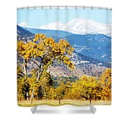 Gold Leaves Shower Curtain