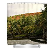 Gold Trimmed Trees Shower Curtain