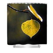 Golden Aspen Leaf Shower Curtain
