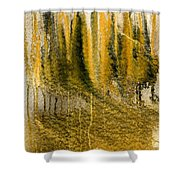 Golden Autumn Forest Shower Curtain