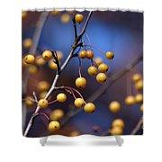 Golden Berries Shower Curtain