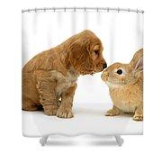 Golden Cocker Spaniel And Rabbit Shower Curtain