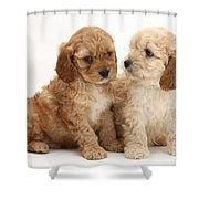 Golden Cockerpoo Puppies Shower Curtain