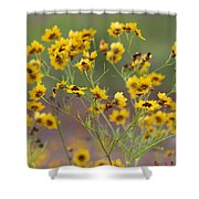 Golden Coreopsis Tickseed Wildflowers Shower Curtain