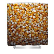 Golden Corn Shower Curtain