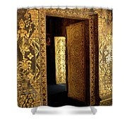 Golden Doorway 2 Shower Curtain