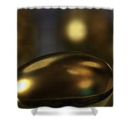 Golden Eggs Shower Curtain