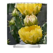 Golden Euphoria Shower Curtain