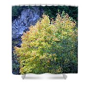 Golden Fall Shower Curtain