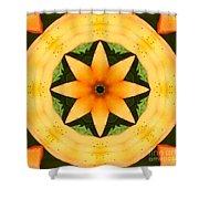 Golden Flower 2 Shower Curtain