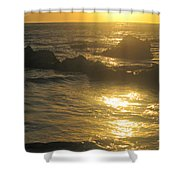 Golden Maui Sunset Shower Curtain
