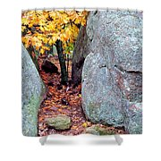 Golden Oak Through Boulders At Elephant Rocks State Park Shower Curtain