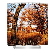 Golden Oaks Shower Curtain