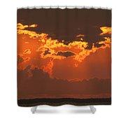 Golden Orange V5 Shower Curtain