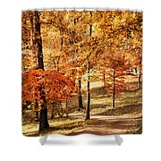 Golden Path Shower Curtain