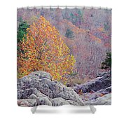 Golden Poplar Among The Rocks At Johnsons Shut Ins State Park Shower Curtain