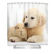 Golden Retriever Pup And Yellow Guinea Shower Curtain by Mark Taylor