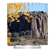 Golden Ribs Shower Curtain