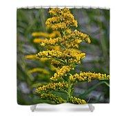 Golden Rod Shower Curtain
