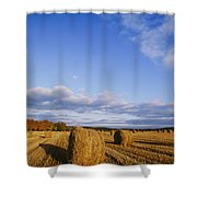 Golden Rolls Of Hay In A Field Shower Curtain