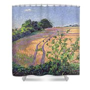 Golden Summer Shower Curtain
