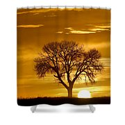 Golden Sunrise Silhouette Shower Curtain