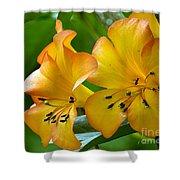 Golden Tropical Flowers Shower Curtain