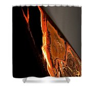 Golden Vulture Shower Curtain