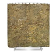 Goldtone Stone Abstract Shower Curtain