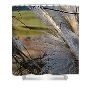Golf Course Grasses Shower Curtain
