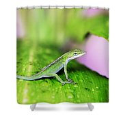 Good To Be Green Shower Curtain
