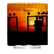 Goodnight Gulls Shower Curtain by Karen Wiles