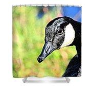 Goose Art Shower Curtain
