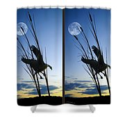 Goose At Dusk - Cross Your Eyes And Focus On The Middle Image Shower Curtain