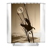 Goose At Dusk - Sepia Shower Curtain
