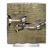 Goose Giving A Warning Shower Curtain