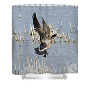 Goose Landing Shower Curtain