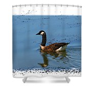 Goose On The Pond Shower Curtain