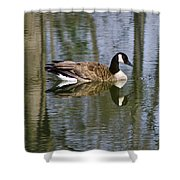 Goose Reflections Shower Curtain