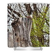 Goose Tree Shower Curtain