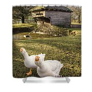 Goosey Goosey Shower Curtain