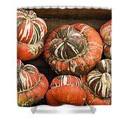 Gorgeous Gourds Shower Curtain