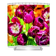 Gorgeous Tulips Shower Curtain
